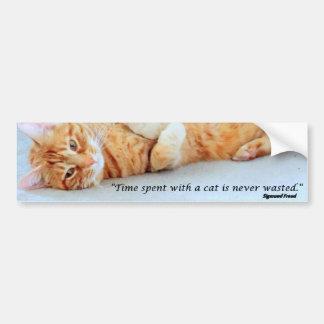 El tiempo pasado con un gato nunca es diseño perdi pegatina para auto