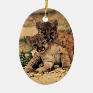 El tigre Cub adorna Ornamente De Reyes