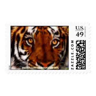El tigre de la fauna observa la colección postal sellos