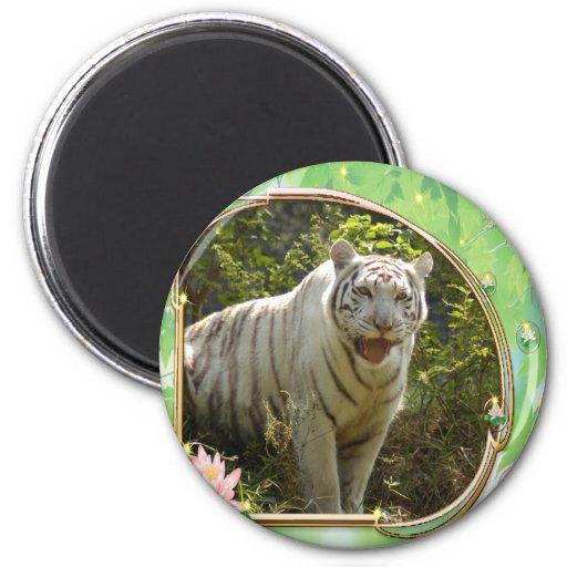 El tigre Día-Blanco de St Patrick Imán Para Frigorifico