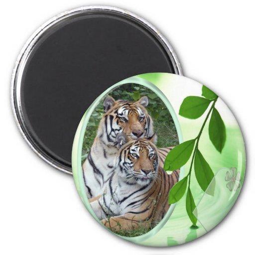 El tigre Día-Blanco de St Patrick Imán Para Frigorífico