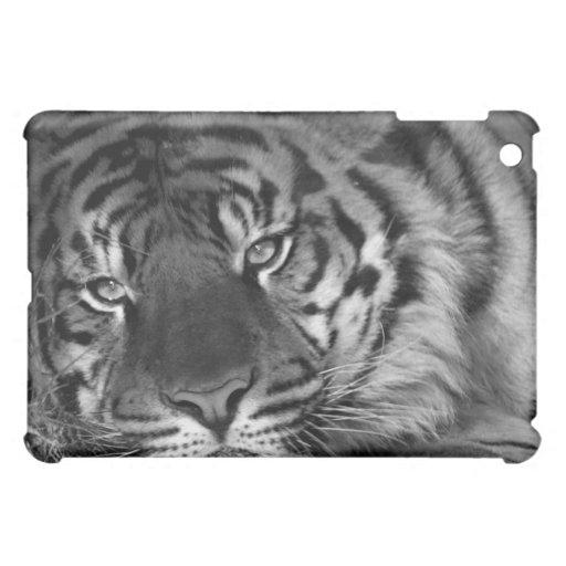 El tigre observa casos del ipad la colección de Br