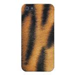 El tigre raya el modelo iPhone 5 funda