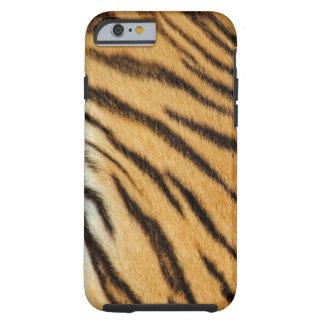 El tigre raya la caja del iPhone 6 Funda De iPhone 6 Tough