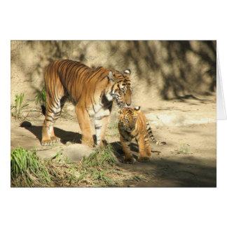 El tigre y Cub de Helaine Felicitacion