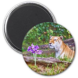El tigre y su imán de la flor