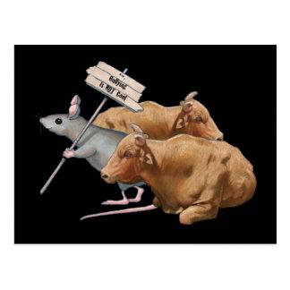 ¡El tiranizar no es fresco! Ilustraciones: Ratón, Postal