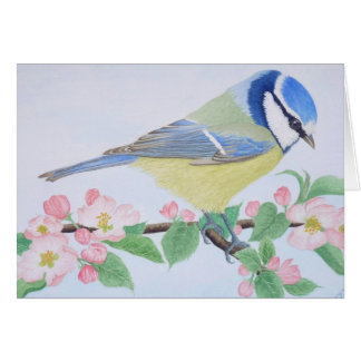 El Tit azul en primavera Tarjeta De Felicitación