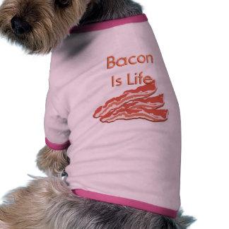 El tocino es vida ropa de perro