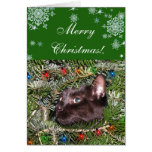 El tomcat en el árbol de navidad felicitaciones