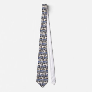 El top del mundo corbata