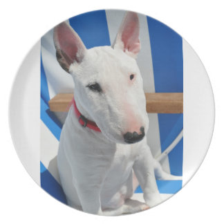 el toro-Terrier-sentarse Plato Para Fiesta