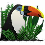 El Toucan magnífico Esculturas Fotográficas