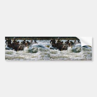 El transportar en balsa del agua blanca etiqueta de parachoque