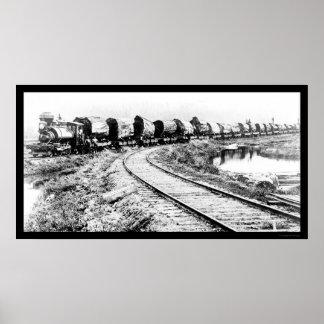 El tren del RR con la secoya registra 1919 Posters