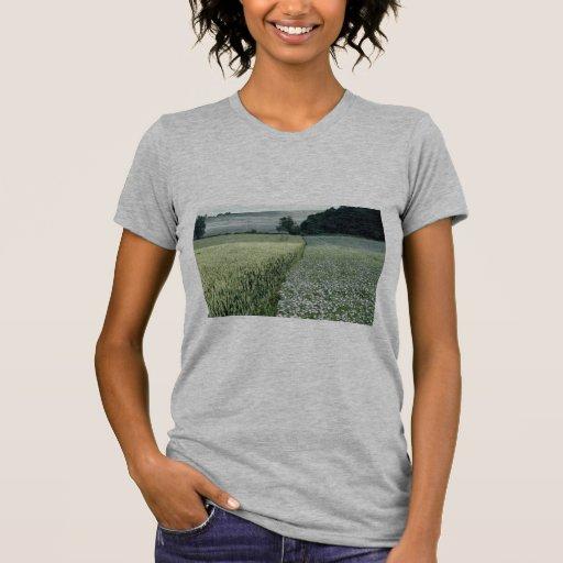 El trigo y la linaza cosechan el campo, camiseta