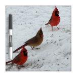 El trío de cardenales seca al tablero del borrado pizarras blancas