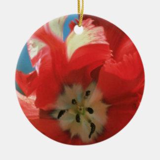 El tulipán blanco del loro Estrella Rijnveld fl Adorno De Reyes
