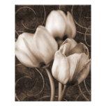 El tulipán blanco florece el fondo negro de la cojinete