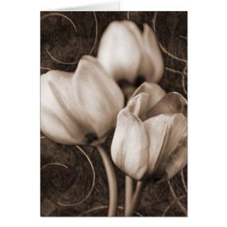 El tulipán blanco florece el fondo negro de la tarjeta de felicitación