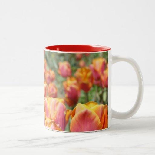El tulipán de los ajustes de la tabla del día de taza de dos tonos