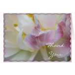 El tulipán de lujo rosado le agradece observar felicitacion