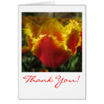 El tulipán del fuego le agradece cardar felicitación