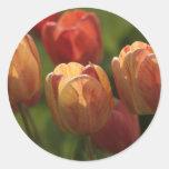 El tulipán florece los pegatinas