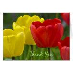 El tulipán le agradece cardar felicitación