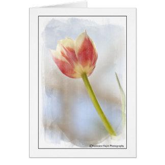 El tulipán le agradece tarjeta de felicitación