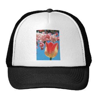 """El tulipán rojo de Triumph, """"fiesta de jardín"""" flo Gorro De Camionero"""