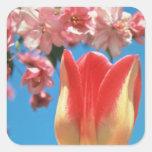 """El tulipán rojo de Triumph, """"fiesta de jardín"""" Calcomania Cuadrada Personalizada"""