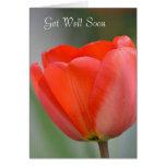 El tulipán rojo floral consigue bien pronto tarjeta