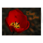 El tulipán rojo le agradece tarjeton