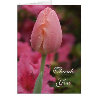 El tulipán rosado del jardín le agradece tarjeta pequeña