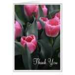 El tulipán rosado le agradece las tarjetas