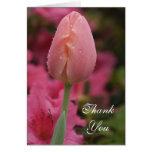 El tulipán rosado le agradece tarjeta de nota
