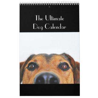 El último calendario del perro