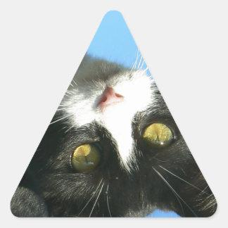 El último espera al bandido curioso pegatinas triangulo personalizadas