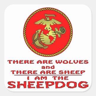 El USMC allí es lobos y hay ovejas Pegatina Cuadrada