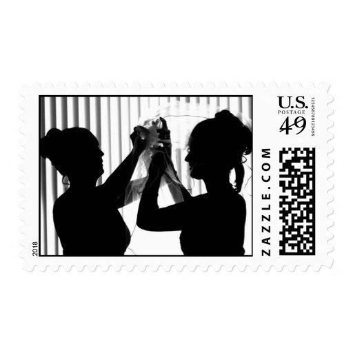 El velo ajusta la imagen del boda de la fotografía sellos
