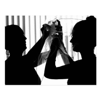El velo ajusta la imagen del boda de la fotografía postales