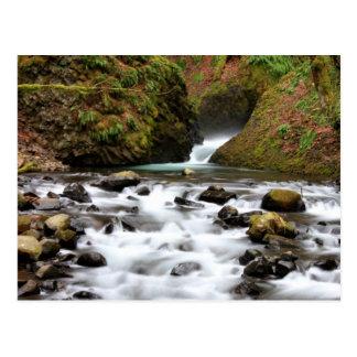 El velo nupcial baja postal de la cascada de Orego