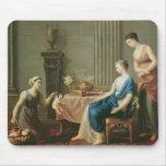 El vendedor de amores, 1763 tapetes de raton