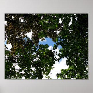 El venir de los cielos azules de la ESPERANZA Póster
