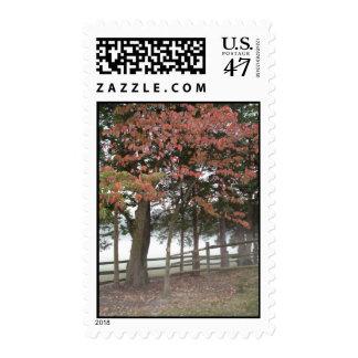 El venir del otoño sellos