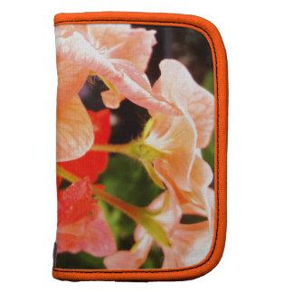 El verano anaranjado del manojo de la flor florece organizador