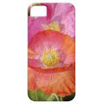 El verano florece la caja 5 iPhone 5 Case-Mate coberturas