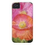 El verano florece la caja de la casamata de Blackb iPhone 4 Case-Mate Carcasa