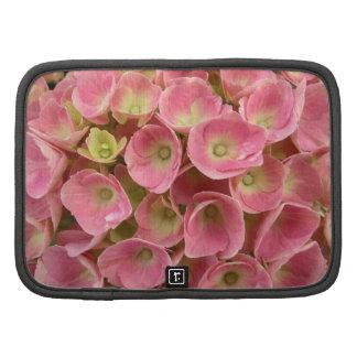el verano rosado florece al planificador de la fot